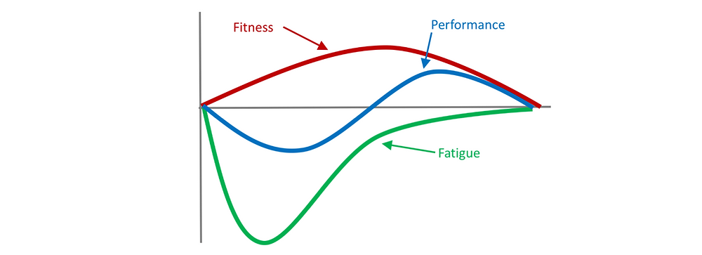 Fitness Fatigue Model