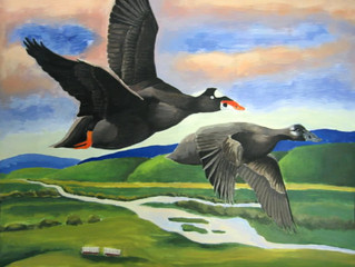 2013 CALIFORNIA JR. DUCK STAMP CONSERVATION & DESIGN CONTEST