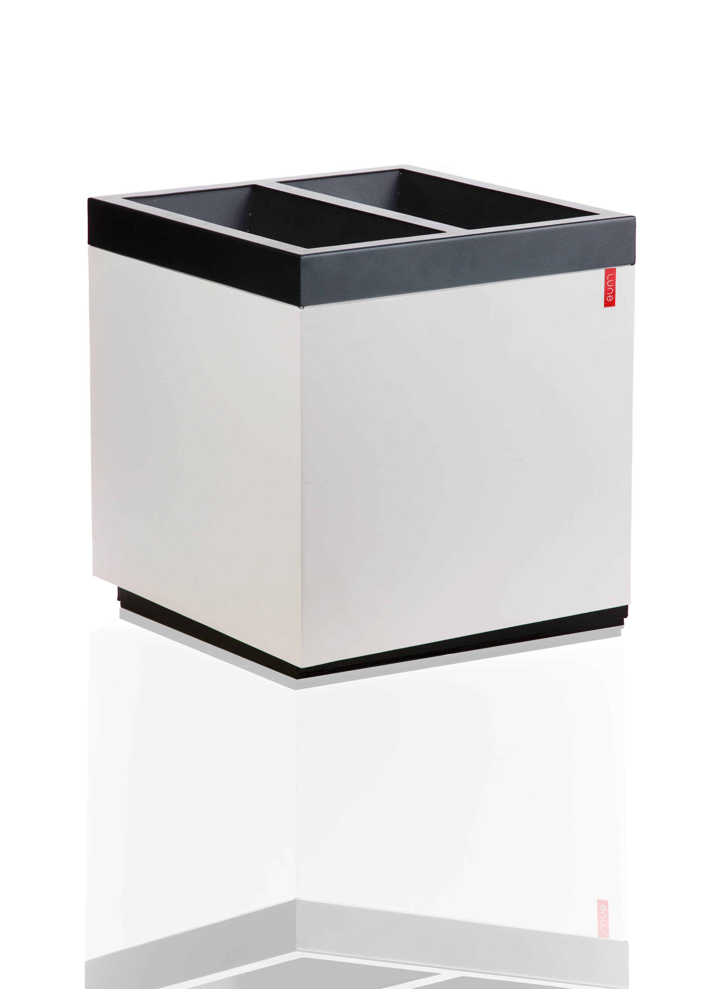 Duo afvalbak Cube met twee fracties