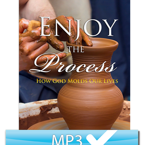 Enjoy the Process: How God Molds Our Lives