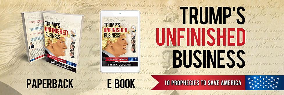Trump Book Banner 2.jpg