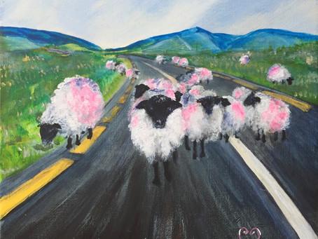 Week 40: Ewes Going Somewhere?