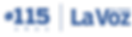 115-LVI-logo-en-azul_edited.png