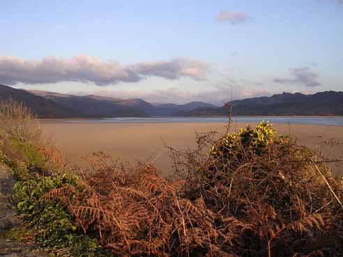 Mawddach estuary in winter