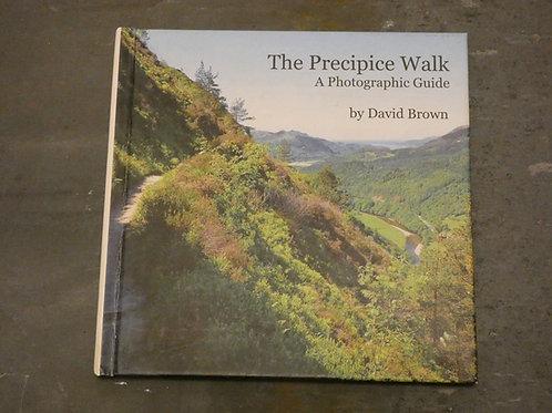 The Precipice Walk: PDF E-Book