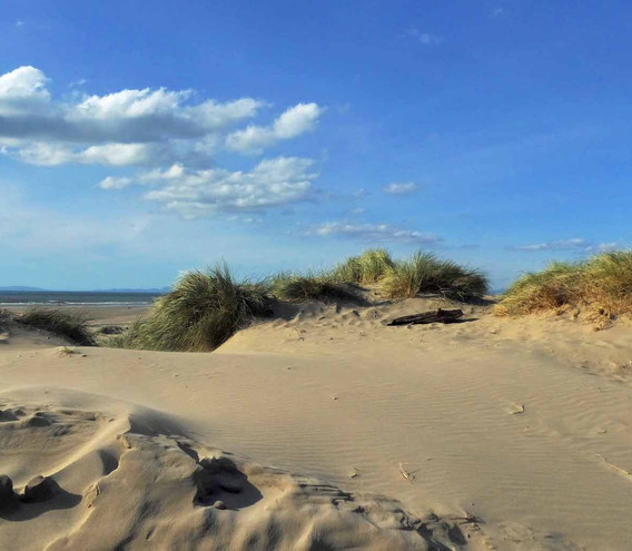 Barmouth 'Maoi' and dunes