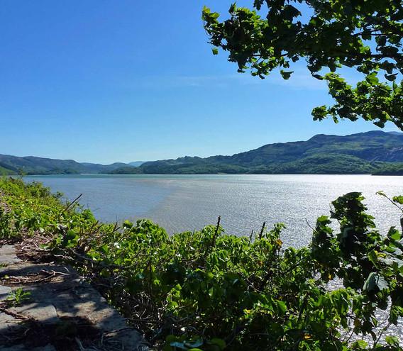 Mawddach estuary in summer