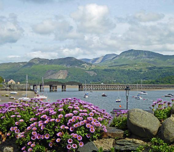 Barmouth Bridge and Flowers 2.jpg