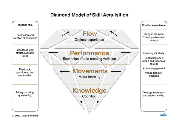 Diamond Model of Skill Acquisition.jpg