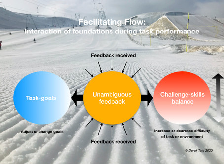 Facilitating flow: How the foundations interact during task performance