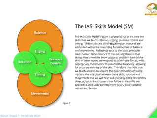 Chapter 7 - The IASI Skills Model