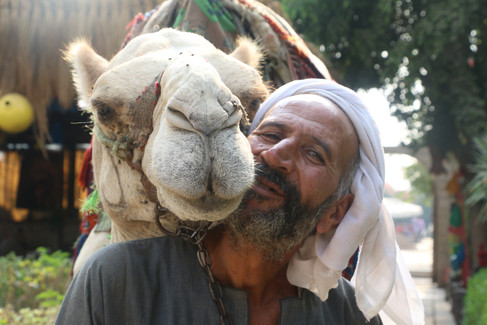 Humans - Giza