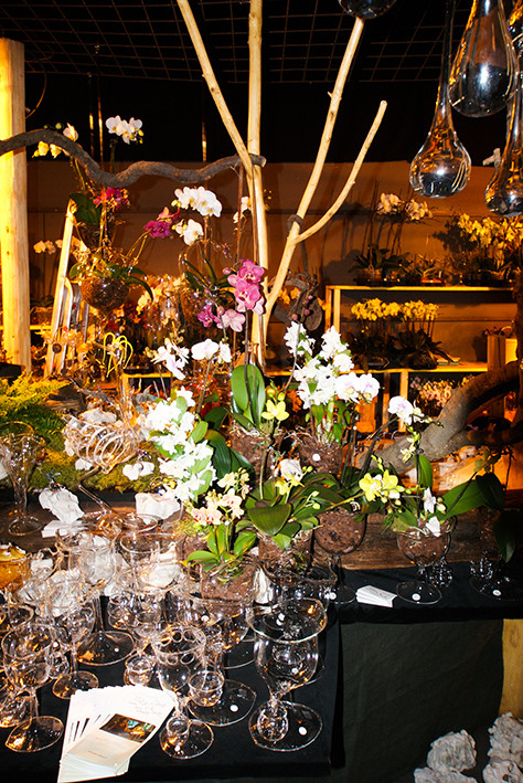 Stehende Orchideengefässe