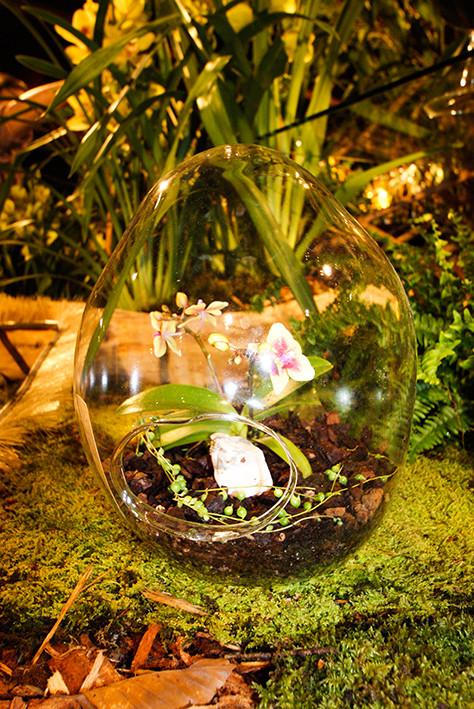 Orchideen Gefäss