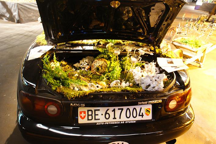 Bepflanztes Cabriolet von hinten