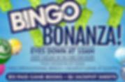 bingo_landscape_nightlife_hd (5).jpg