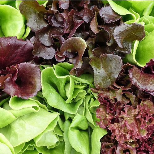 Colorful Lettuce Mix: 5oz