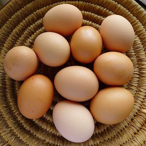 Eggs: Dozen