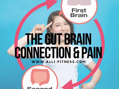 The Gut-Brain Connection & Pain: Part 2