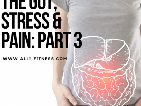 Your Gut and Stress:Part 3