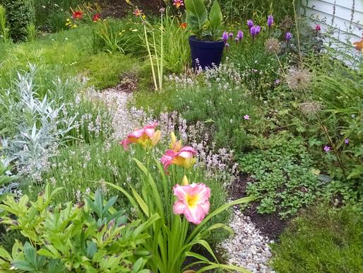 The Tussie Mussie Garden