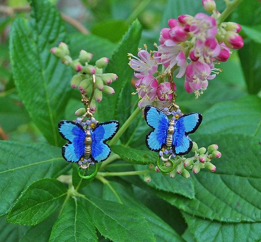 Wholesale: Blue Morpho Butterfly Earrings