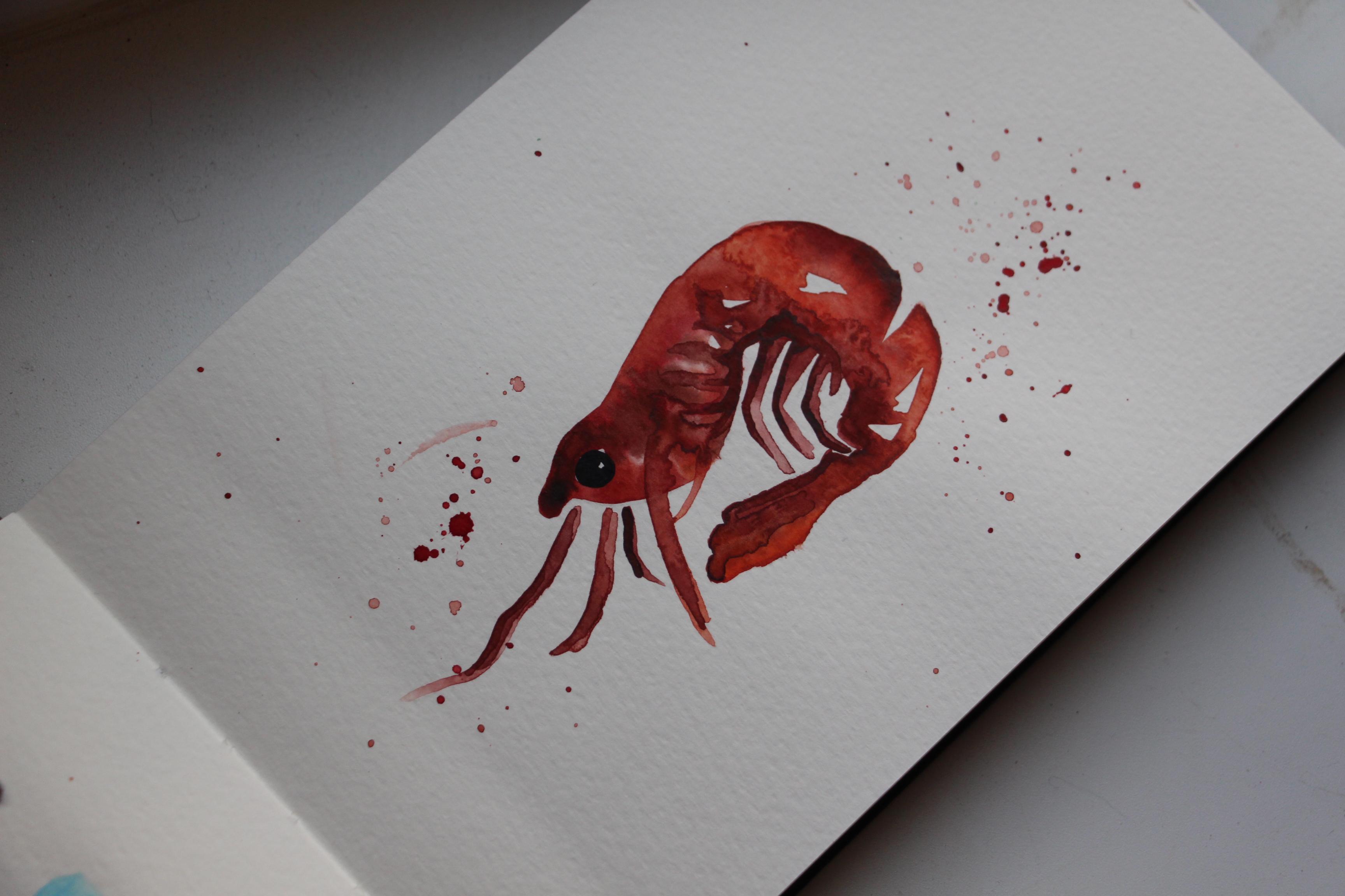 Shrimp Watercolor Angelina Dederer