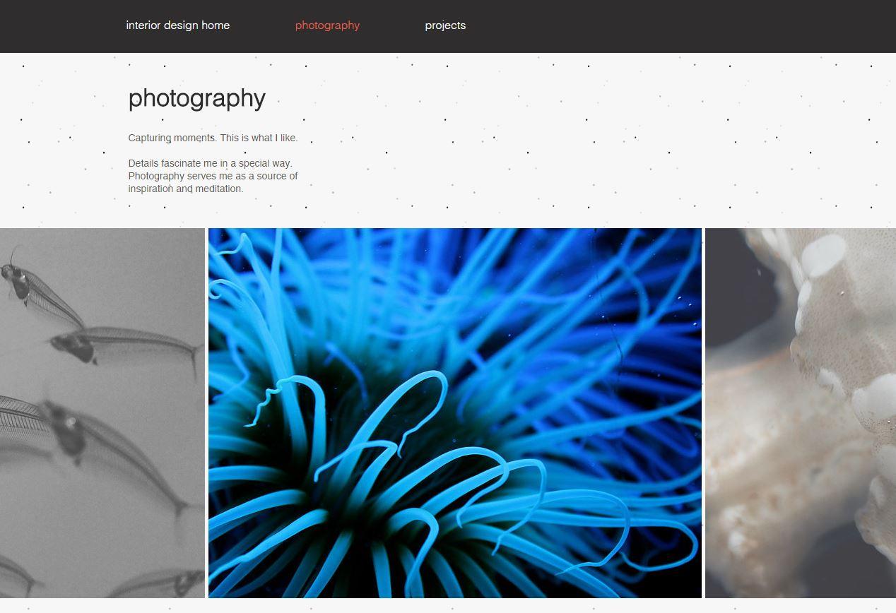 Angelina_Dederer_Website_Design_Photography