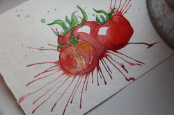 Tomato Watercolor Angelina Dederer