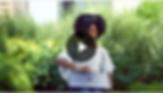 Screen Shot 2019-07-31 at 3.34.20 PM.png