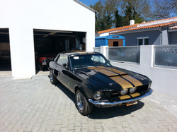 Ford Mustang GT 350 H clone
