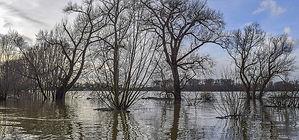 flood-6023999_640.jpg