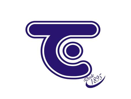 Casa Timoni (Tapetes, Borracha, EVA, Tecido, Sacolas, Travesseiros, Colchões)