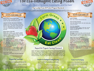 MEET THE ECO-INTELLIGENT EATING MODEL