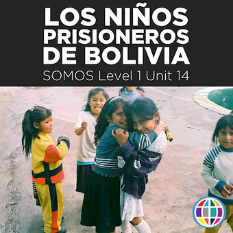 SOMOS 1 Unit 14 cover.jpg