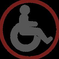 ذوي الاحتياجات الخاصة.png