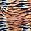 Thumbnail: Animals Collection
