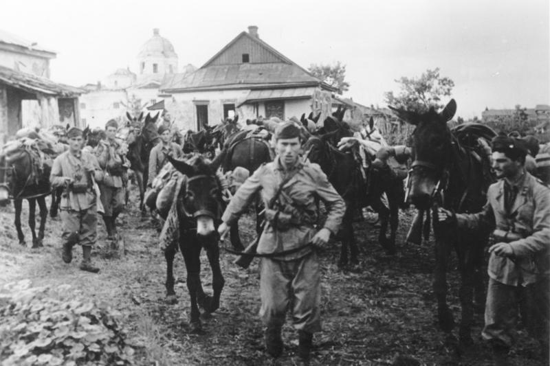 Italian troops in Russia, c. July 1942. (Source: Wikimedia)
