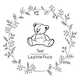 logo ted.png