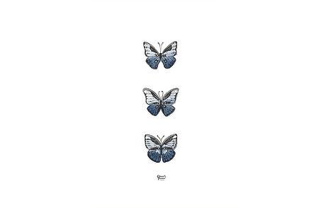 3 papillons blabla.jpg