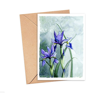 Iris versicolore avec fond.jpg