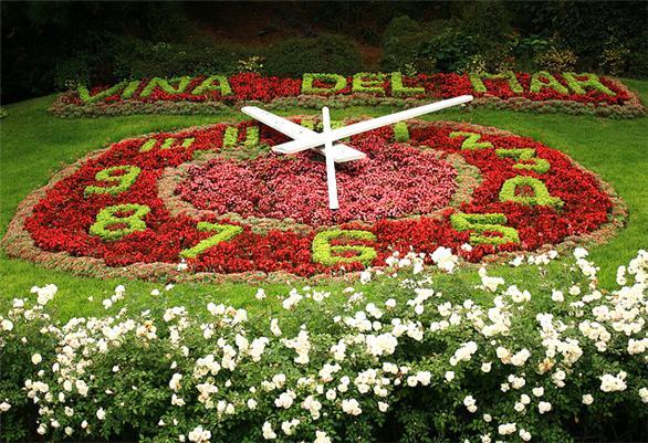 Reloj de Flores (5 min)