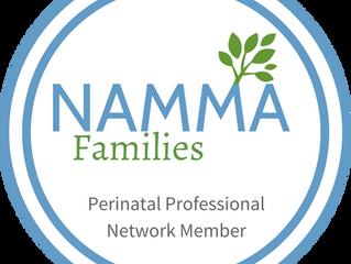 NAMMA Families Fair 2017