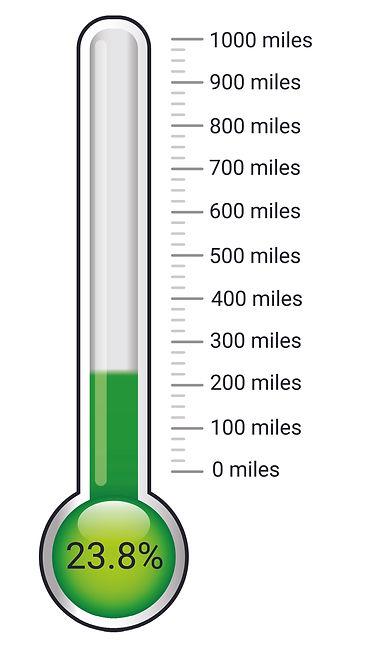 thermometer 23.8%.jpg