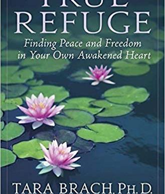 Another 5 star book for your bookshelf: Tara Brach's 'True Refuge'
