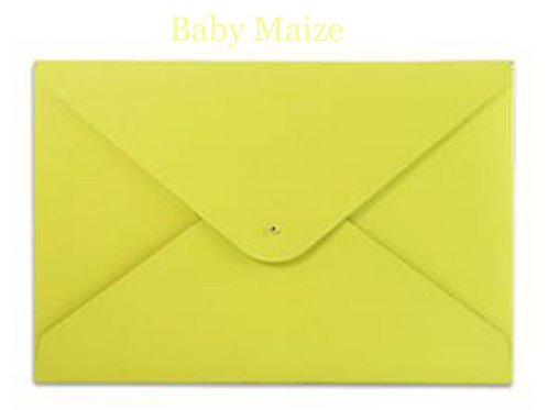 Baby Maize Leather File Folder