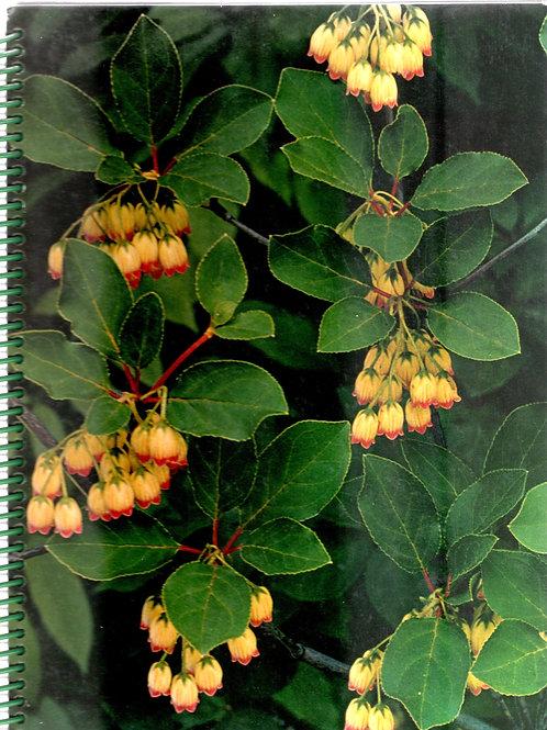 Flowering Shrubs Book Journal