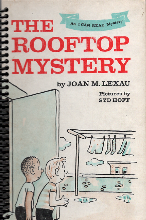 The Rooftop Mystery