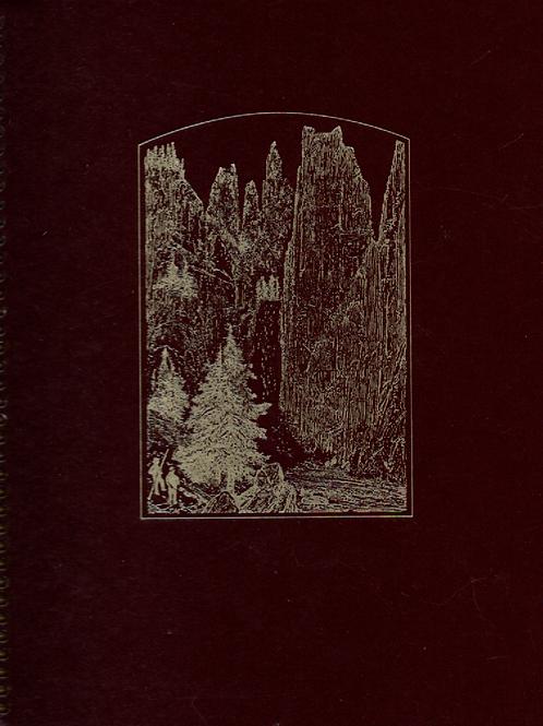 An American Idea Book Journal