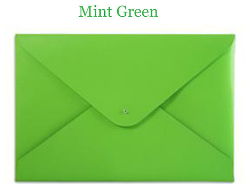 Mint Green Leather File Folder